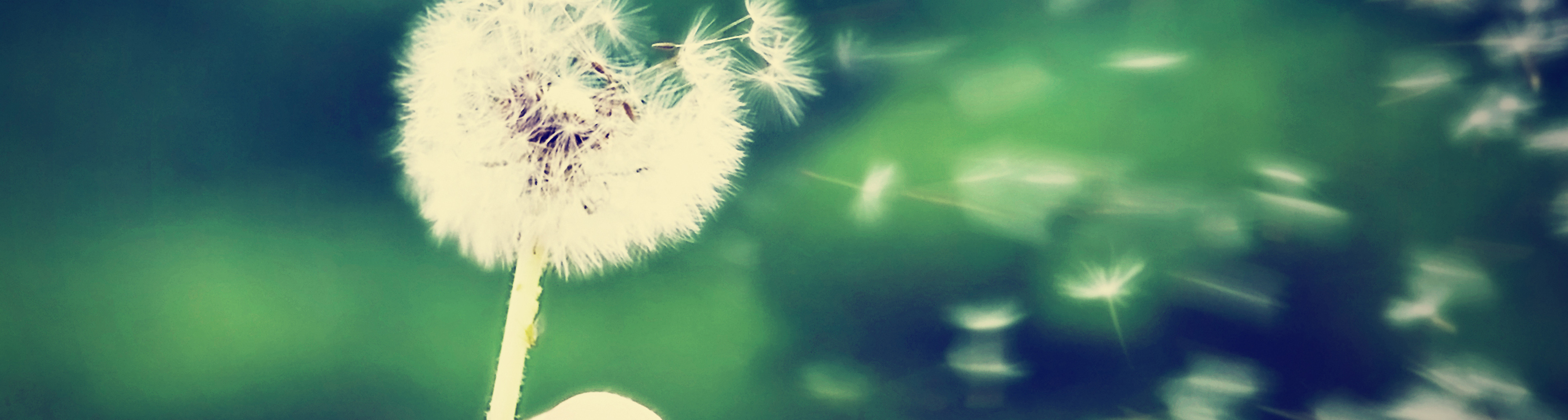 header_breathe